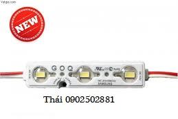 thai0902502881